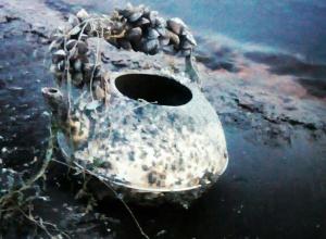 Из Воронежского водохранилища на берег выбросило чайник из «Пиратов Карибского моря»