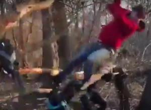 Месть дерева обидчикам сняли на видео в Воронеже
