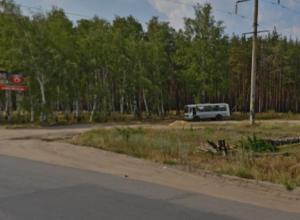 Лесной массив в воронежской Отрожке отдали застройщику