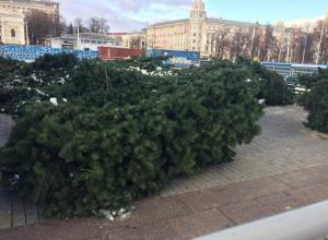 Жители Воронежа шокировались ёлкой, которую купили за 7 млн и привезли на площадь