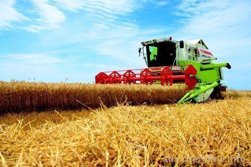 На1августа собрано 42 млн тонн зерна— Минсельхоз РФ