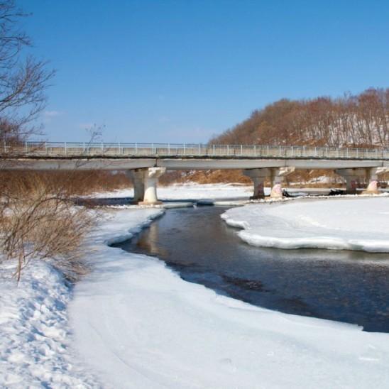 Воронежской области весенние паводки не страшны