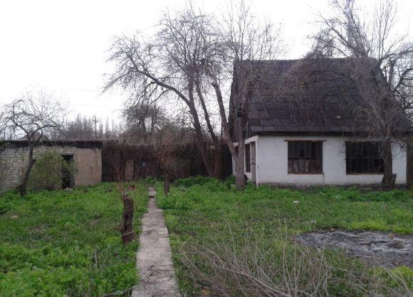 video-kamasutra-devushki-chlenov-snt-fotku-muzhchini