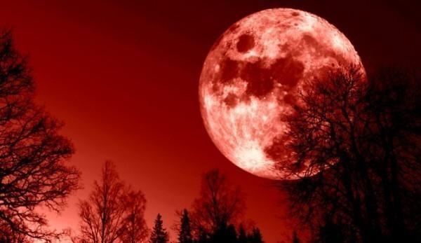 Сегодня граждане Тверской области смогут наблюдать красную Луну