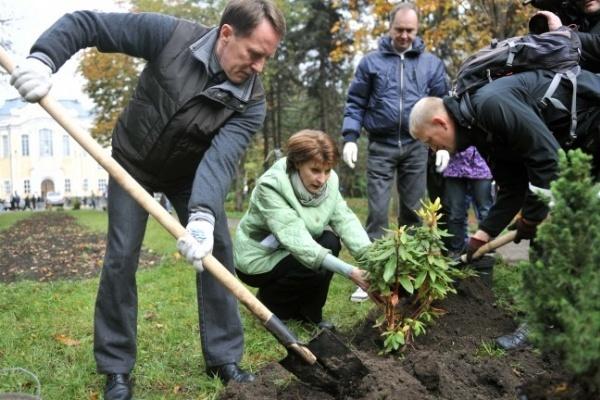 С сентября в центре Воронежа начнется массовое озеленение улиц