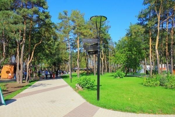 Власти благоустроят берег вворонежском парке «Алые паруса»