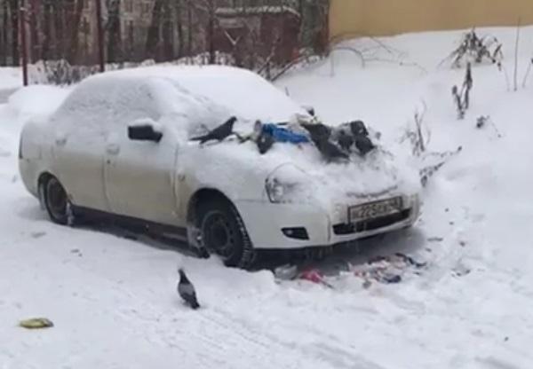 Голубиную месть за унижение мусорщиков сняли в Воронеже