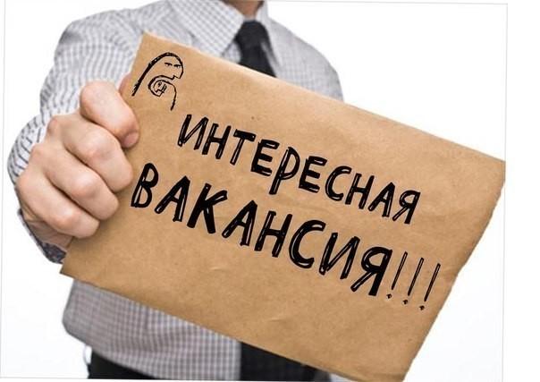 Аналитики назвали самые высокооплачиваемые вакансии октября в Воронеже
