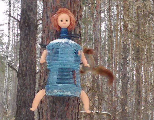 В воронежском лесу появилась инфернальная кормушка для белок и птиц