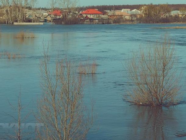 Воронежцы будут долго помнить весну 2018 года в Сомово