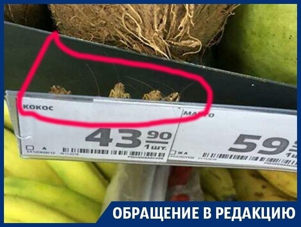 Неприятных существ среди фруктов нашла жительница Воронежа в магазине