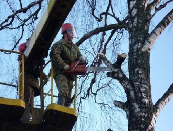 ВВоронеже 12ноября закроют для движения площадь Ленина