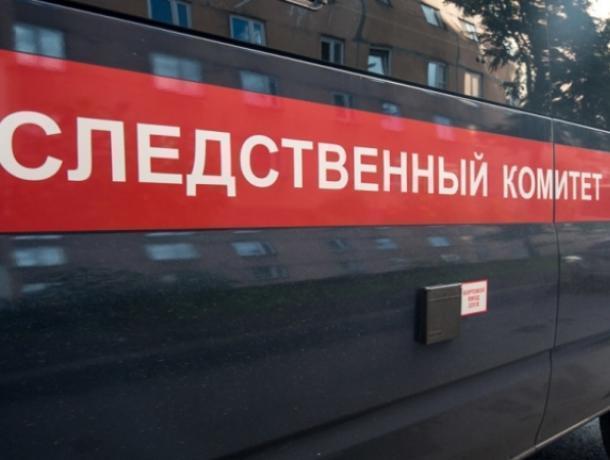 Мать задушила малыша, найденного насвалке Нововоронежа