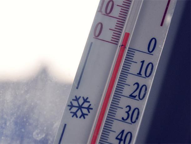 Иэто декабрь?!: ВВоронеж пришло аномальное потепление