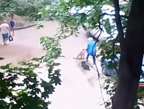 Сотрудница воронежского «Центрторга» держит в страхе жителей соседнего двора