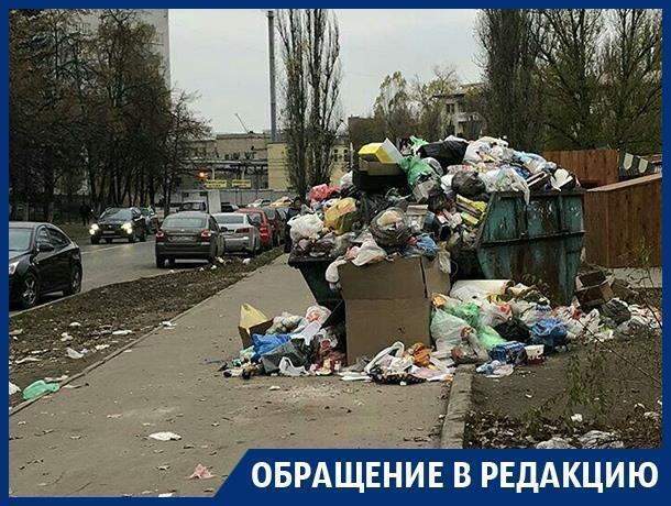 Мусорный контейнер потеснил пешеходов на тротуаре в Воронеже