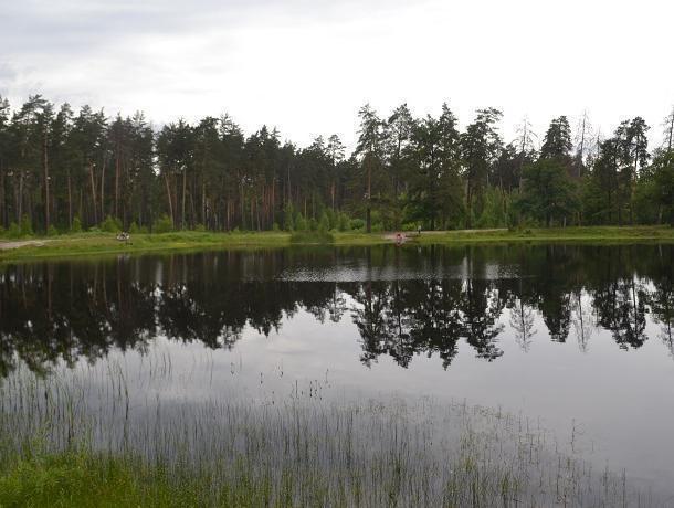 Воронежцам предложили купаться в озере Грязном вместо Чистого