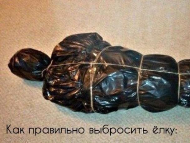 Воронежцам показали, как в Старый Новый год с черным юмором избавиться от елки