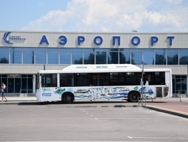 Общественники представили 5 вариантов имен для воронежского аэропорта