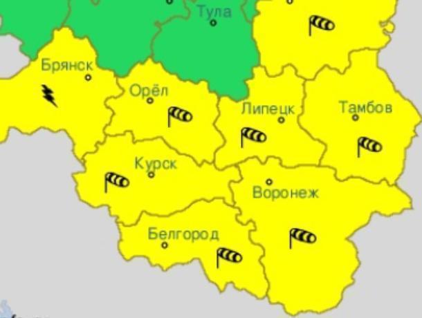 Желтый уровень опасности объявили в Воронежской области