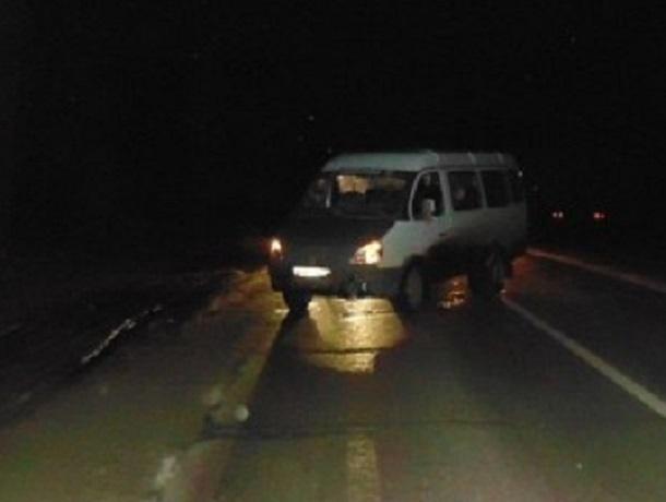 ВВоронежской области под колесами «ГАЗели» умер 26-летний парень