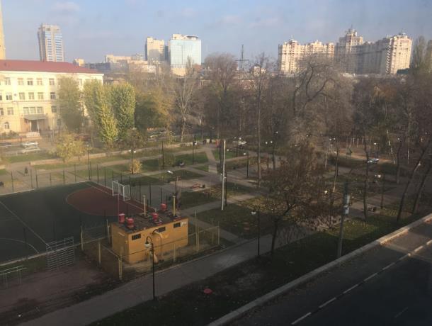 В центре Воронежа появится еще один  каток