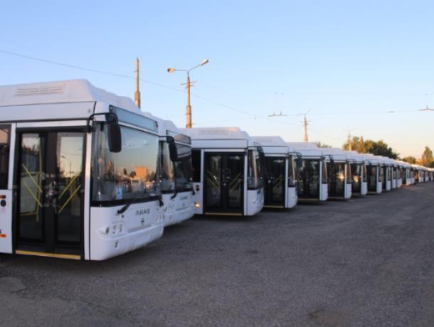Воронеж закупит 30 вместительных автобусов по 8,5 млн  рублей