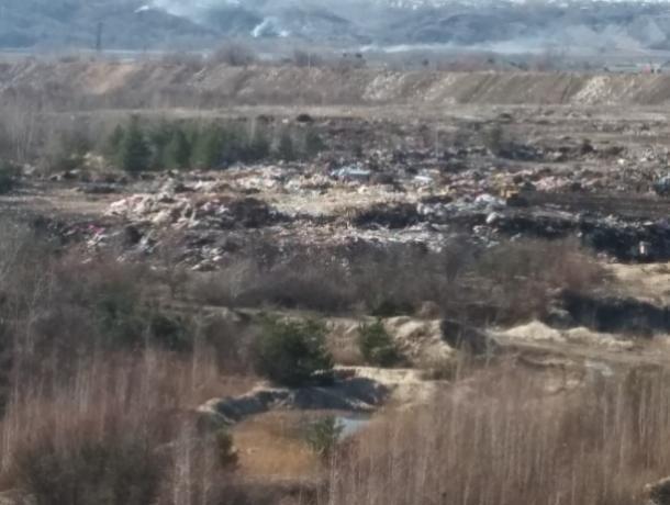 Воронежцы боятся повторения волоколамской мусорной катастрофы