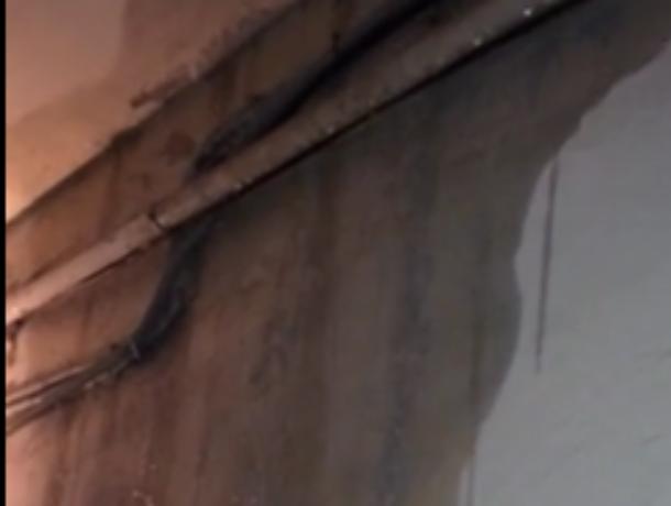 Беспощадный потоп в пятиэтажке Воронежа попал на видео