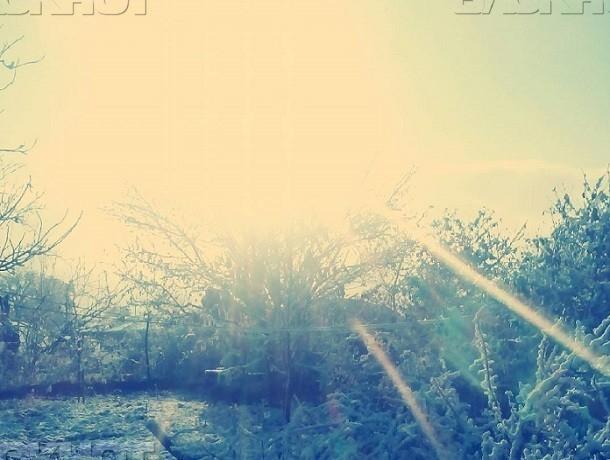 Предновогодняя неделя вВоронеже будет снежной