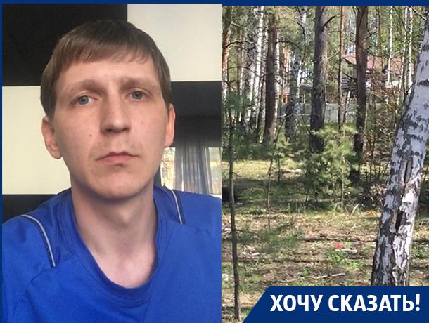 Зеленые легкие Воронежа уничтожают в угоду частной застройке