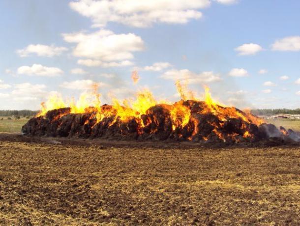 ВВоронежской области женщина сожгла 22 тюка сена своего несостоявшегося работодателя