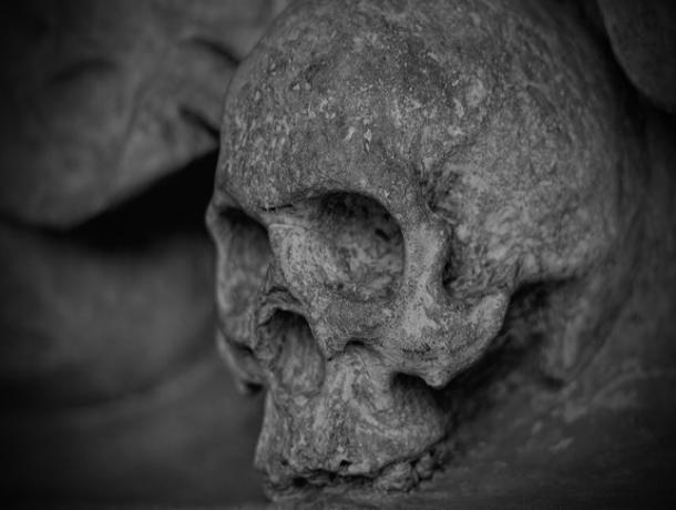 Воронежец нашел человеческие кости в погребе купленного дома
