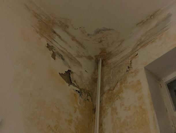 Жуткие палаты воронежской больницы №2 пообещали отремонтировать до конца года