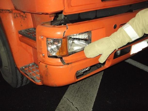 ВВоронежской области «КамАЗ» насмерть сбил пешехода