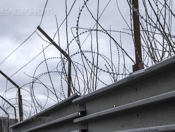 Воронежцу, убившему ирасчленившему невольного  знакомого, дали 11 лет колонии