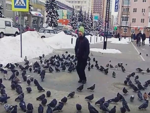 Дрессированные голуби: гость изУфы продемонстрировал эффектный номер своронежскими птичками