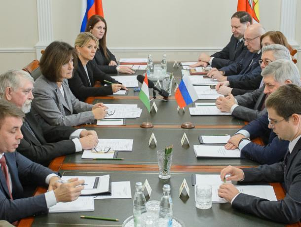Гусев договорился с министром Венгрии о международной школе онкологии в Воронеже