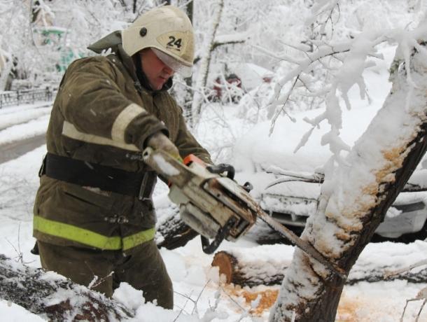 Воронежские спасатели после снегопада вооружились бензопилами