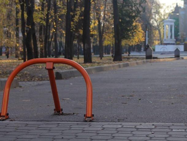 Власти выгнали экономных автомобилистов из парка в центре Воронежа