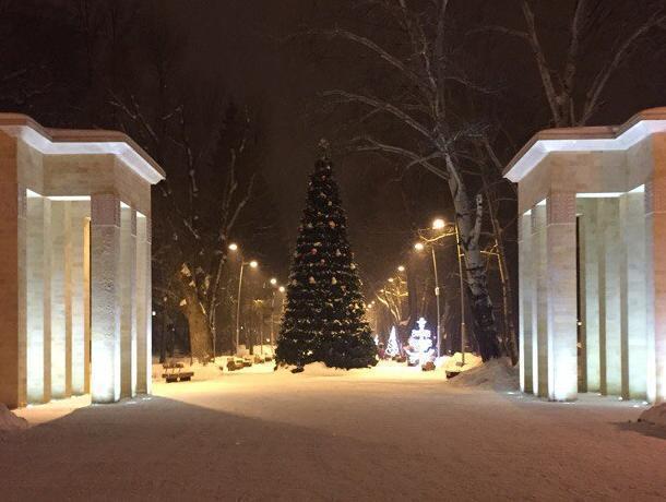 Праздник кнам приходит: ВВоронеже анонсировали даты открытия новогодних елок