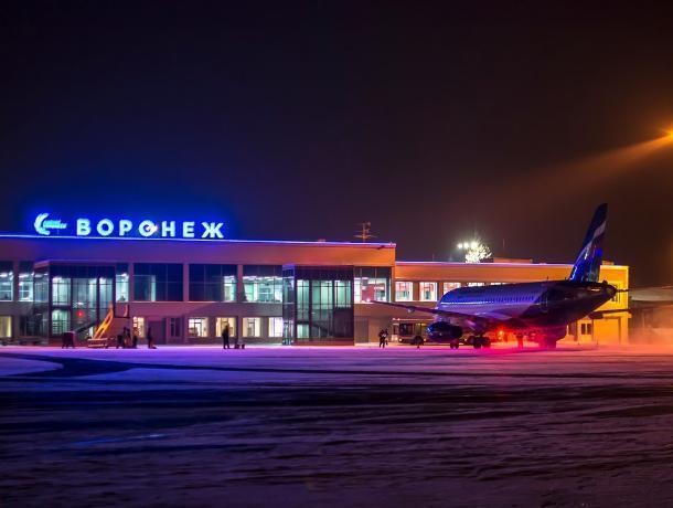 Воронеж обошел Санкт-Петербург в голосовании за имя Петра I для аэропорта