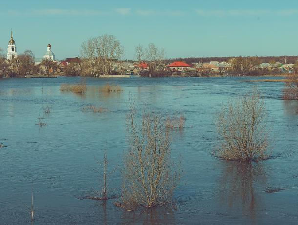 Воронежцев позвали поиграть в футбол на затопленном поле