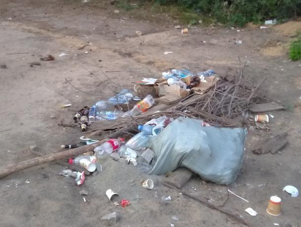 В лесу обнаружили последствия грязного отдыха воронежцев