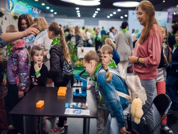Воронежцев научат утилизировать отходы на фестивале «Экоград»