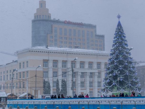 Власти Воронежа сэкономят 600 тыс рублей на установке новогодней елки