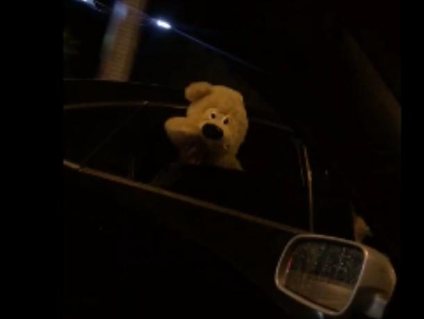 Плюшевый пассажир в Ford Mondeo  скрасил вечер воронежским автомобилистам