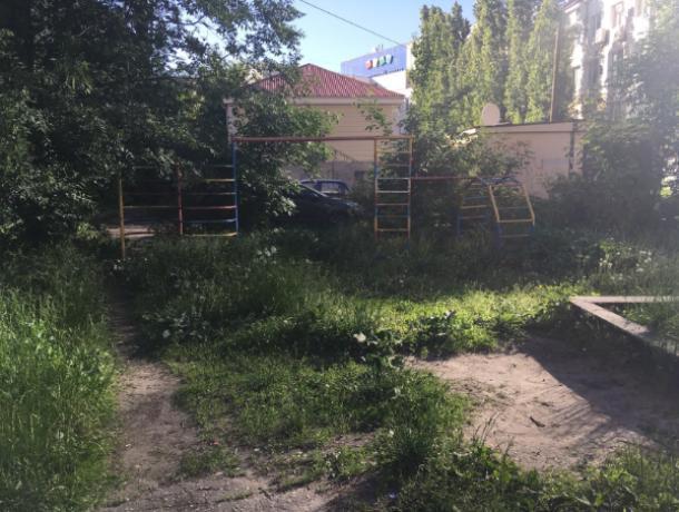 Воронежцам предложили вскладчину привести дворы в порядок