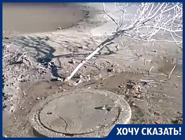 Я не понимаю, почему все бездействуют, – жительница Воронежа
