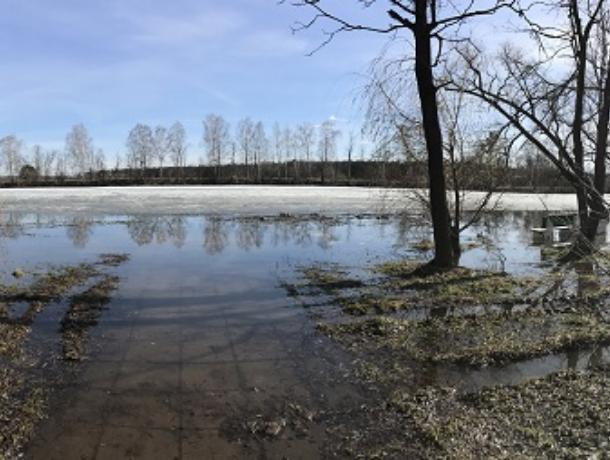 Названы воронежские реки, которые выйдут из берегов на этой неделе